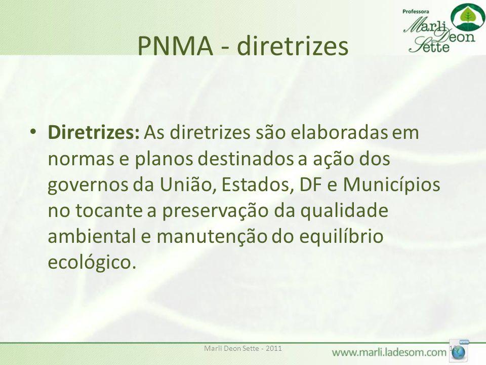 Marli Deon Sette - 201113 PNMA - diretrizes • Diretrizes: As diretrizes são elaboradas em normas e planos destinados a ação dos governos da União, Est