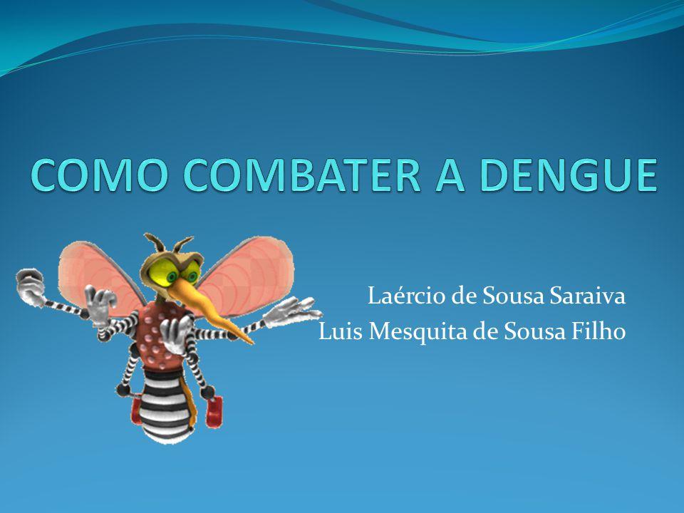 Como é o mosquito da dengue.•É escuro e rajado de branco.