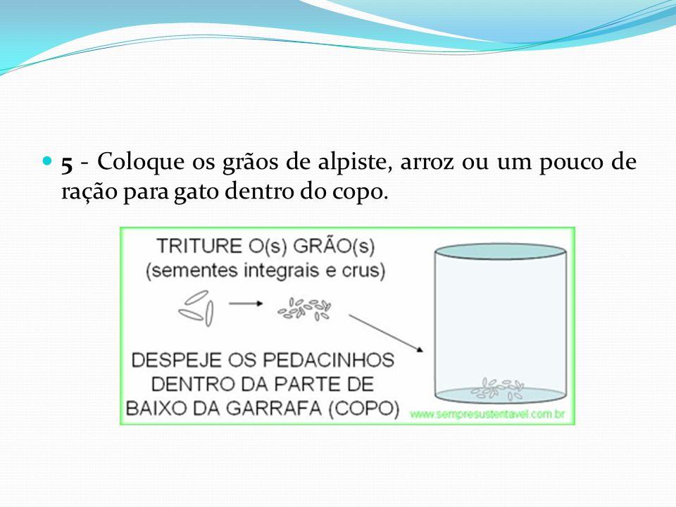  5 - Coloque os grãos de alpiste, arroz ou um pouco de ração para gato dentro do copo.