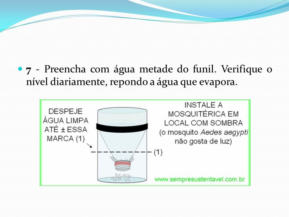  7 - Preencha com água metade do funil. Verifique o nível diariamente, repondo a água que evapora.