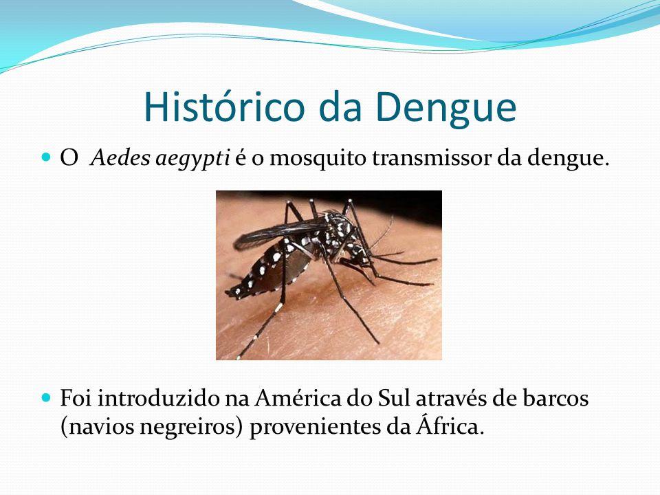 Histórico da Dengue  O Aedes aegypti é o mosquito transmissor da dengue.  Foi introduzido na América do Sul através de barcos (navios negreiros) pro