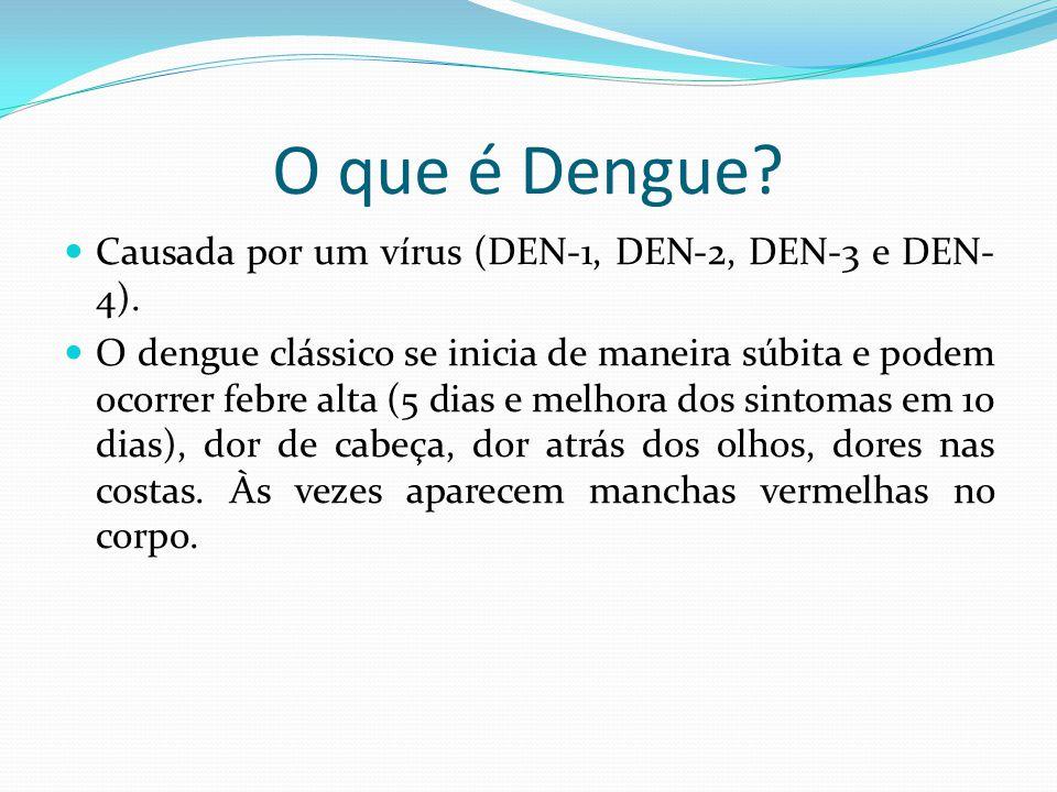 O que é Dengue?  Causada por um vírus (DEN-1, DEN-2, DEN-3 e DEN- 4).  O dengue clássico se inicia de maneira súbita e podem ocorrer febre alta (5 d
