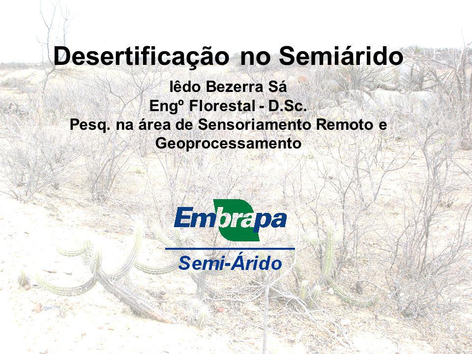 Desertificação no Semiárido Iêdo Bezerra Sá Engº Florestal - D.Sc. Pesq. na área de Sensoriamento Remoto e Geoprocessamento