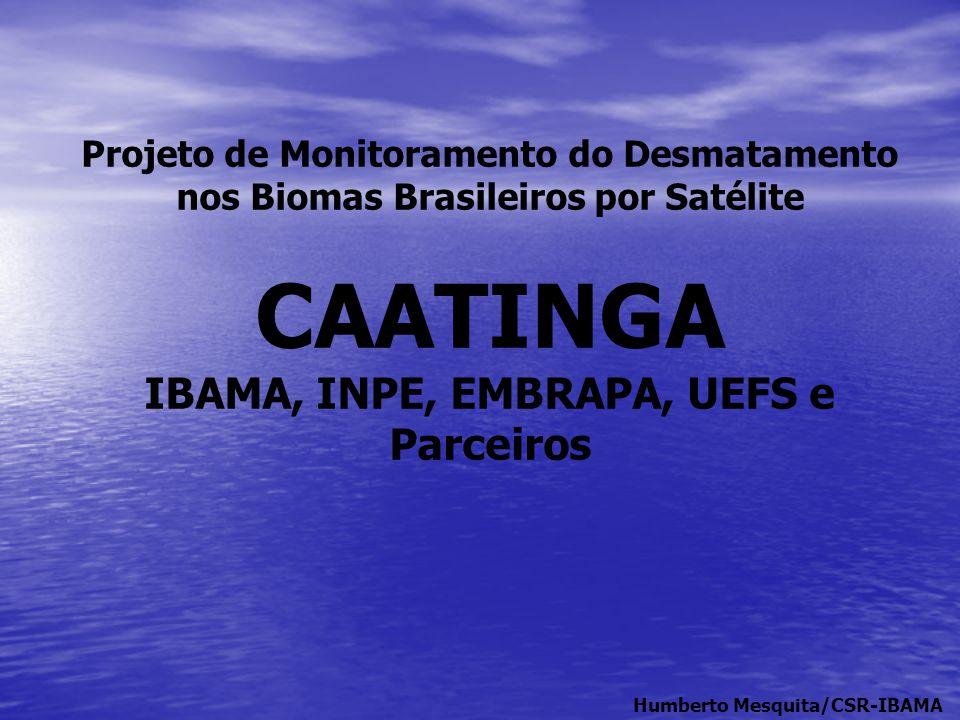 Projeto de Monitoramento do Desmatamento nos Biomas Brasileiros por Satélite CAATINGA IBAMA, INPE, EMBRAPA, UEFS e Parceiros Humberto Mesquita/CSR-IBA