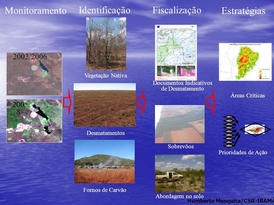 2002/2006 200 8 Monitoramento Identificação Vegetação Nativa Desmatamentos Fornos de Carvão Documentos Indicativos de Desmatamento Sobrevôos Abordagem