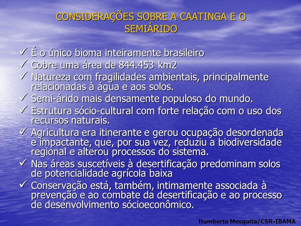 CONSIDERAÇÕES SOBRE A CAATINGA E O SEMIÁRIDO  É o único bioma inteiramente brasileiro  Cobre uma área de 844.453 km2  Natureza com fragilidades amb