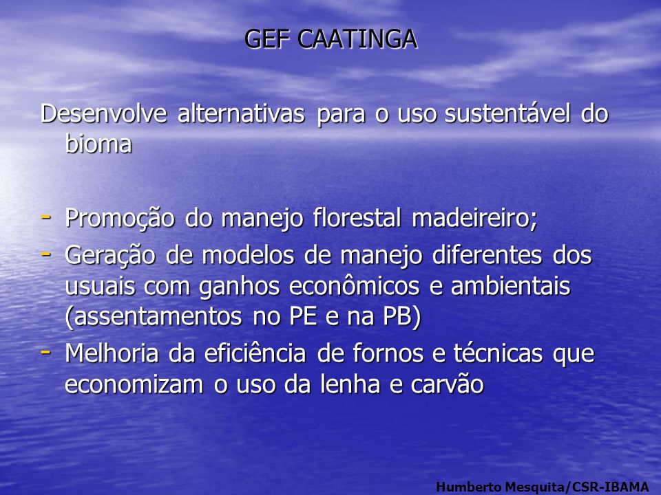 GEF CAATINGA Desenvolve alternativas para o uso sustentável do bioma - Promoção do manejo florestal madeireiro; - Geração de modelos de manejo diferen