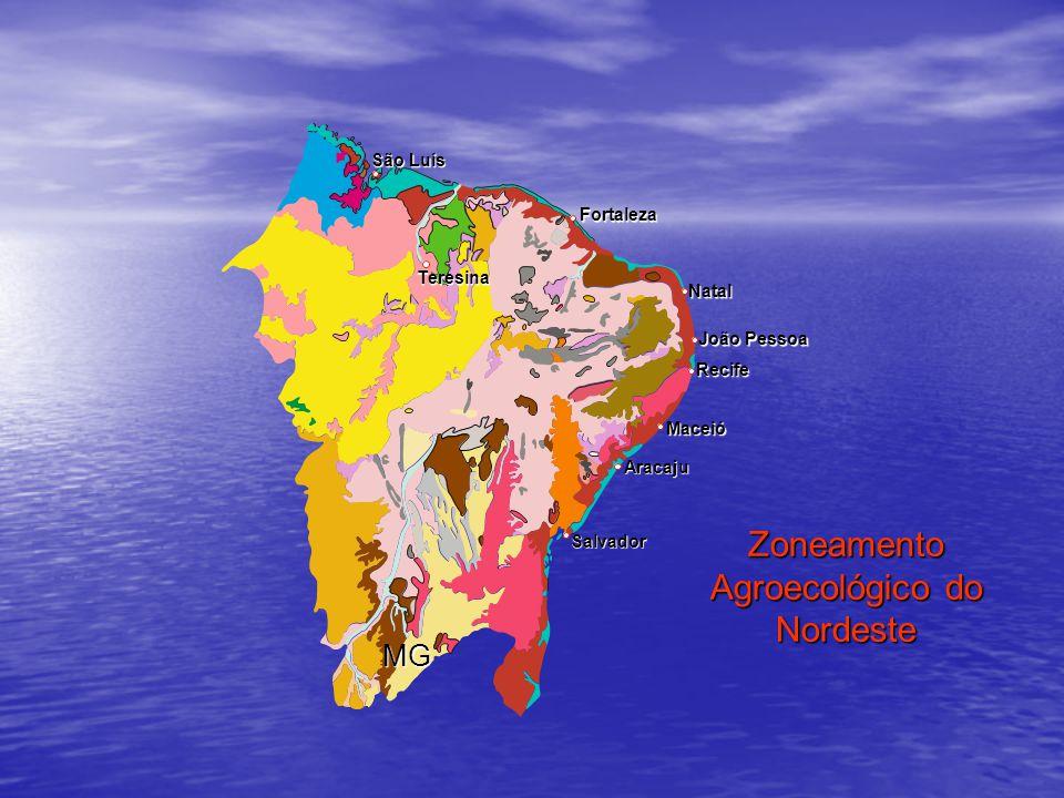 Zoneamento Agroecológico do Nordeste São Luís Natal Recife Maceió Salvador Teresina Fortaleza Aracaju João Pessoa MG