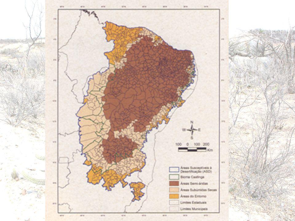 CONCEITOS - UNCCD DEGRADAÇÃO DA TERRA DEGRADAÇÃO DA TERRA significa a perda ou redução da produtividade econômica ou biológica dos ecossistemas secos, causadas pela:  Erosão do solo  Deterioração dos recursos hídricos  Perda da vegetação natural DESERTIFICAÇÃO: DESERTIFICAÇÃO: É a degradação da terra nas regiões áridas, semi-áridas e sub-úmidas secas, resultante de vários fatores, entre elas as variações climáticas e atividades humanas..