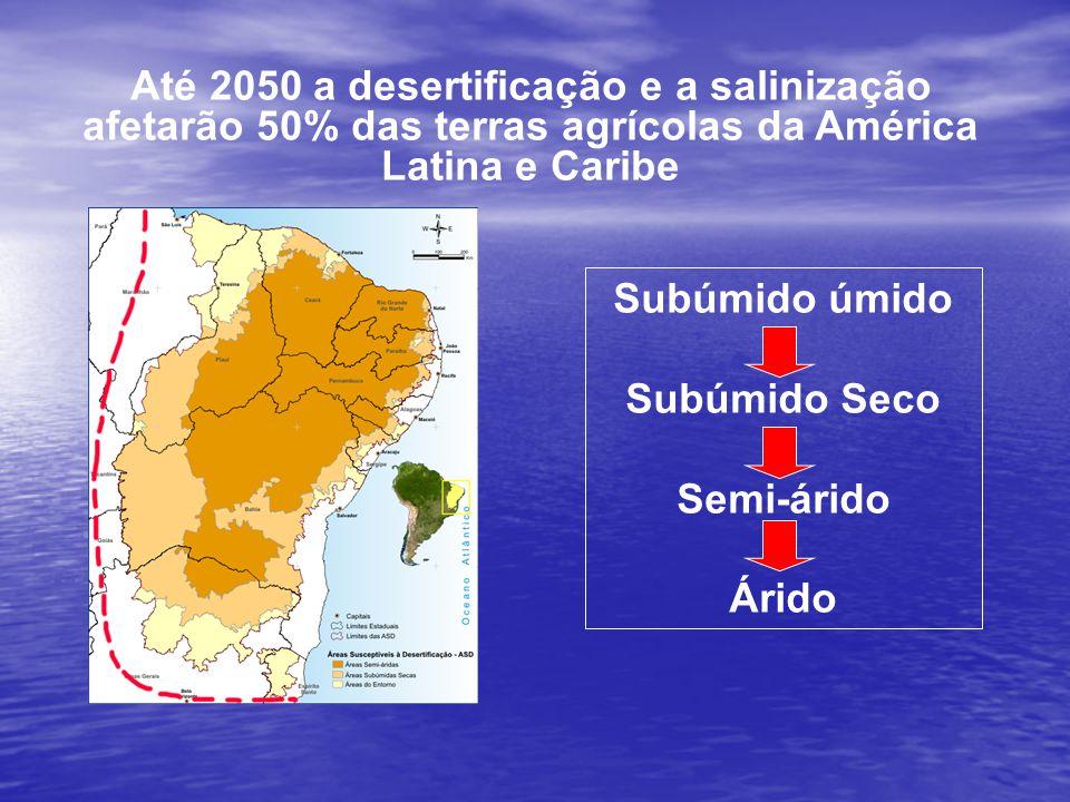 Aumento migratório 1 milhão de pessoas deixaram as áreas rurais nas ASD entre 1991 e 2000 Mudanças Climáticas Diminuição das áreas agricultáveis (perdas de solo e salinização) Diminuição da produção agrícola Aumento da pobreza Aumento das perdas econômicasAs perdas econômicas podem chegar a U$ 5 bilhões porano, devido à desertificação Perda da biodiversidade (patrimônio genético) Degradação dos solos