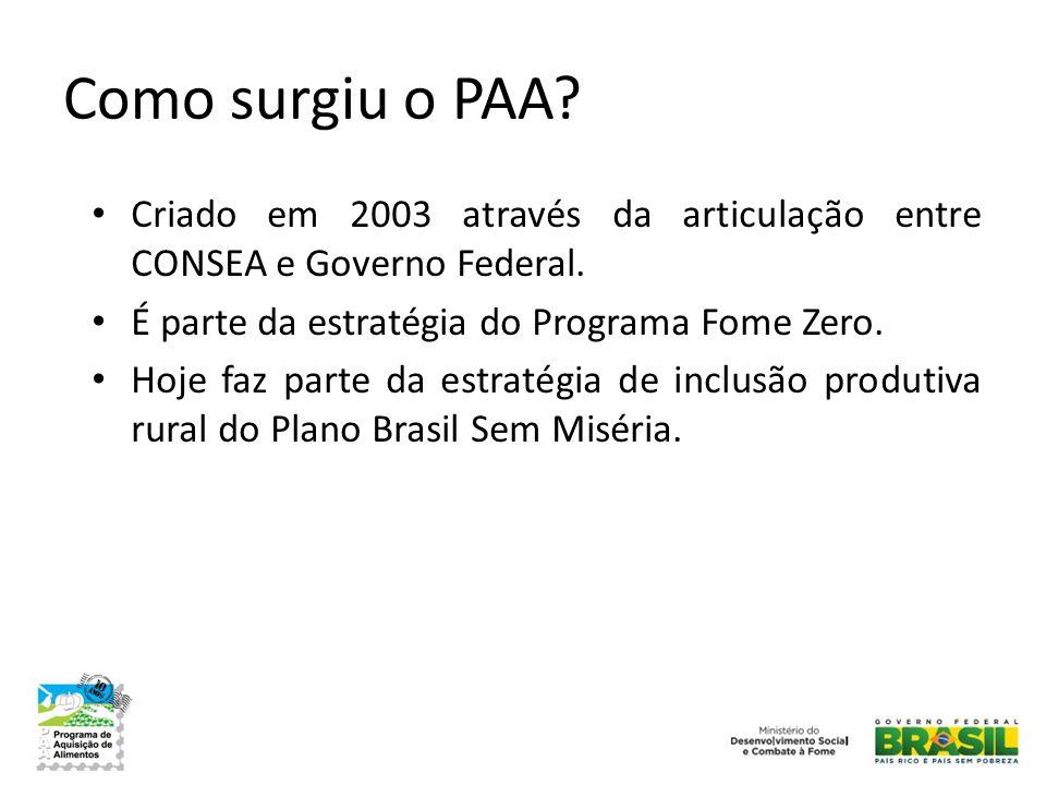 Como surgiu o PAA? • Criado em 2003 através da articulação entre CONSEA e Governo Federal. • É parte da estratégia do Programa Fome Zero. • Hoje faz p