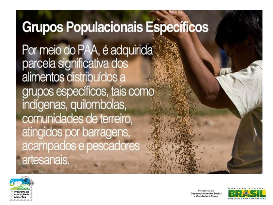 O PAA se desdobra em diferentes modalidades executadas por vários agentes operadores para promover o acesso a alimentos e o fortalecimento da agricultura familiar.