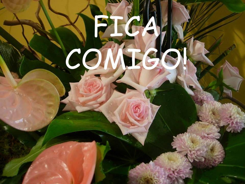 FICA COMIGO!