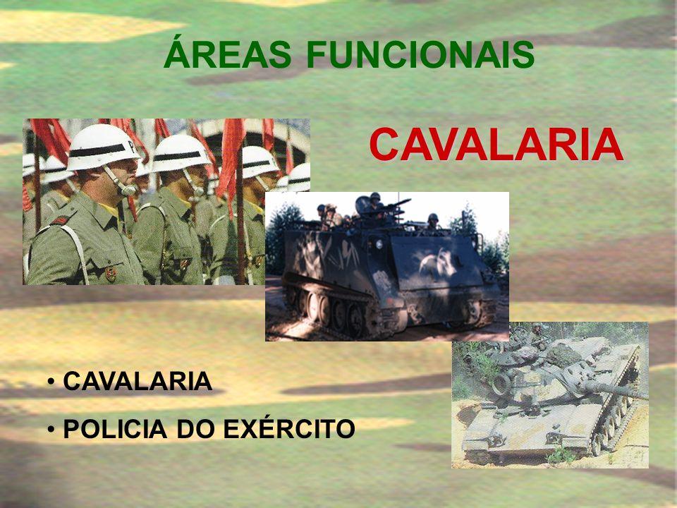 ÁREAS FUNCIONAIS ARTILHARIA • ARTILHARIA DE CAMPANHA • ARTILHARIA ANTI-AÉREA