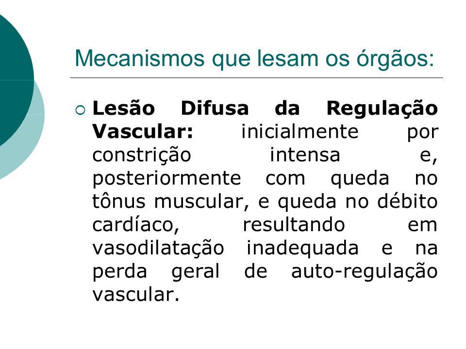 Mecanismos que lesam os órgãos:  Lesão Difusa da Regulação Vascular: inicialmente por constrição intensa e, posteriormente com queda no tônus muscular, e queda no débito cardíaco, resultando em vasodilatação inadequada e na perda geral de auto-regulação vascular.