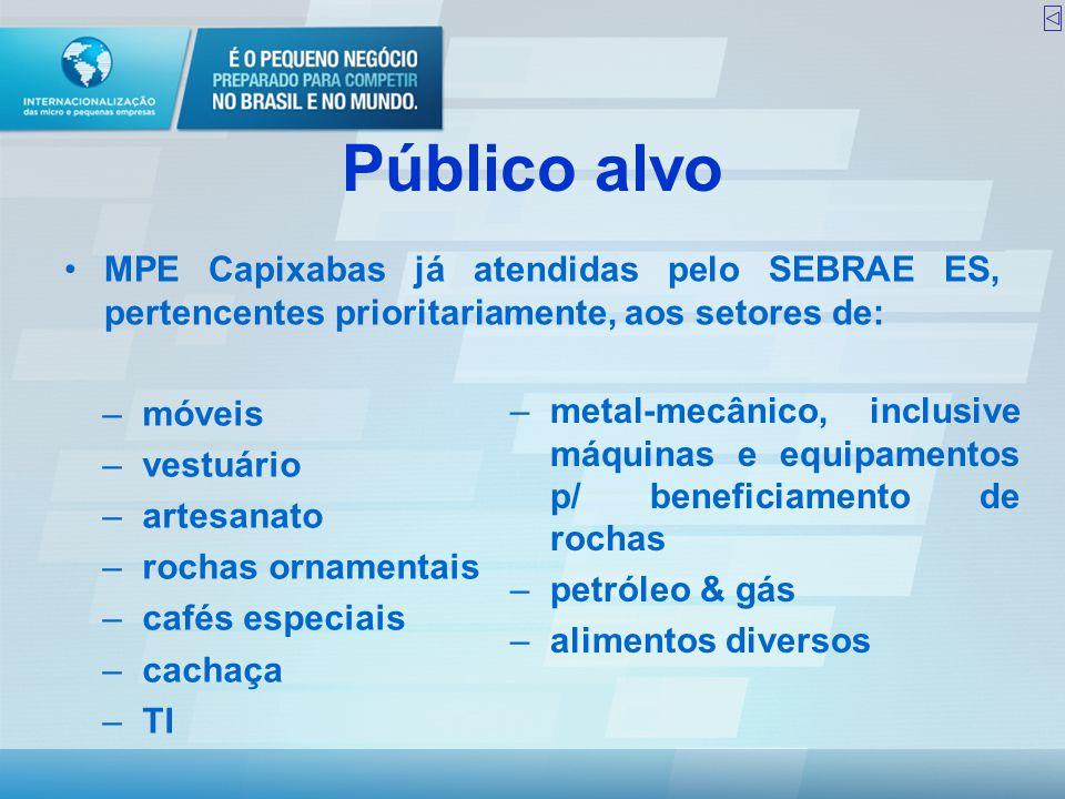 Público alvo •MPE Capixabas já atendidas pelo SEBRAE ES, pertencentes prioritariamente, aos setores de: –metal-mecânico, inclusive máquinas e equipame