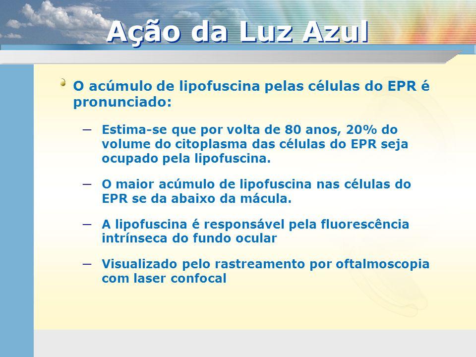 O acúmulo de lipofuscina pelas células do EPR é pronunciado:  Estima-se que por volta de 80 anos, 20% do volume do citoplasma das células do EPR seja