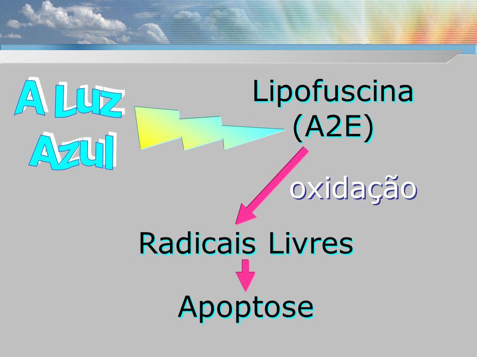 Lipofuscina (A2E) Radicais Livres Apoptose oxidação