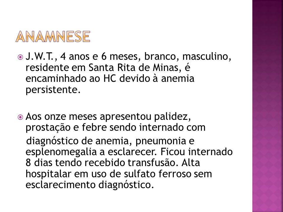  J.W.T., 4 anos e 6 meses, branco, masculino, residente em Santa Rita de Minas, é encaminhado ao HC devido à anemia persistente.  Aos onze meses apr