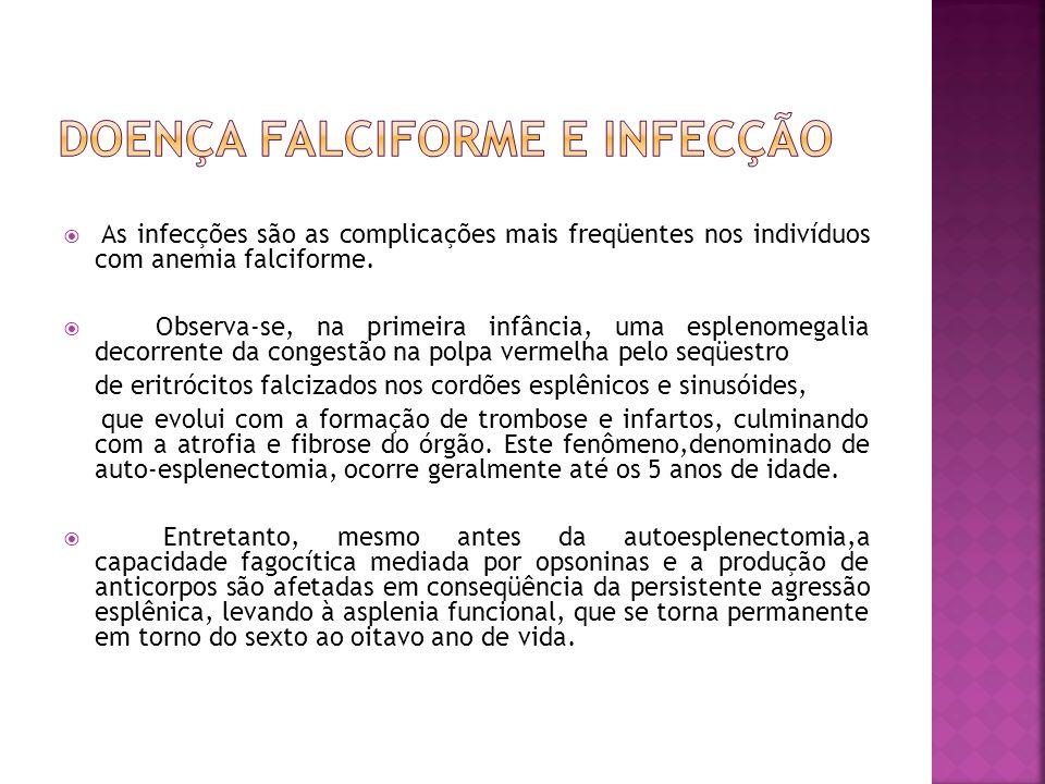  As infecções são as complicações mais freqüentes nos indivíduos com anemia falciforme.  Observa-se, na primeira infância, uma esplenomegalia decorr