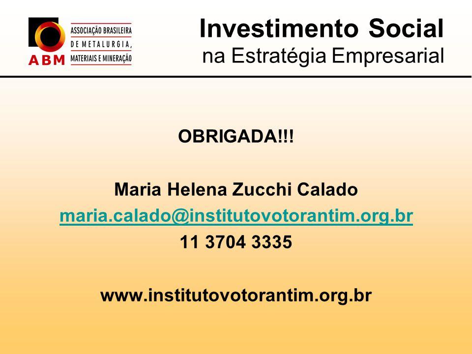 Investimento Social na Estratégia Empresarial OBRIGADA!!.