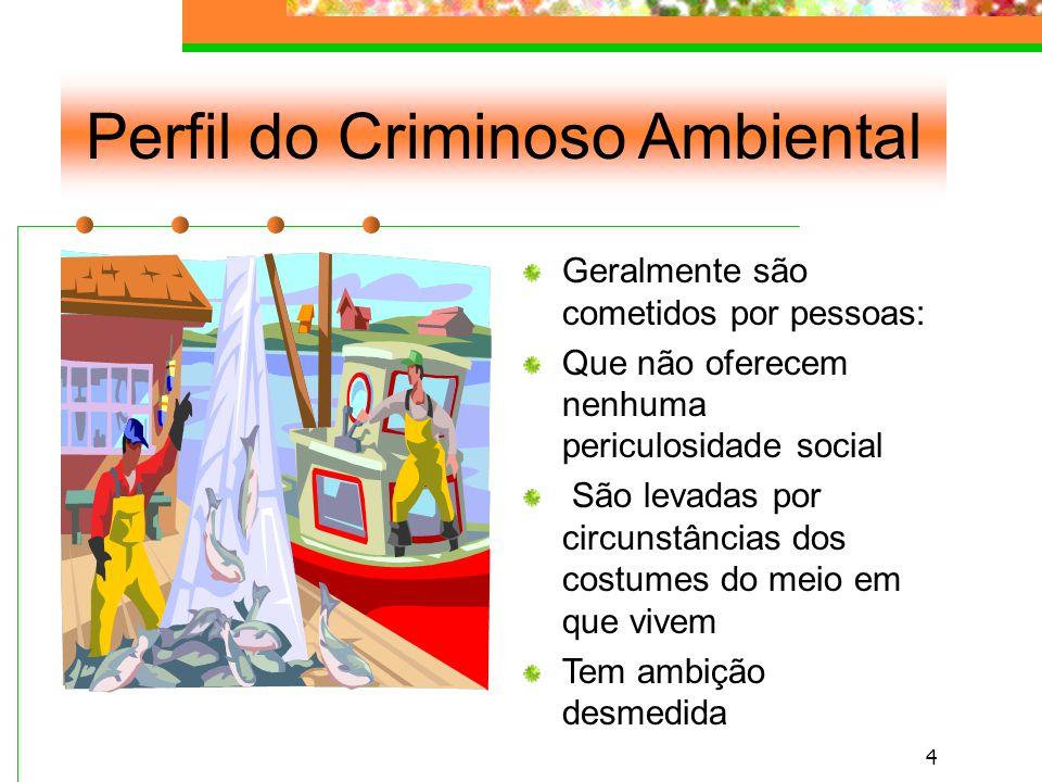3 Posicionamento Constitucional Mandato expresso de criminalização.