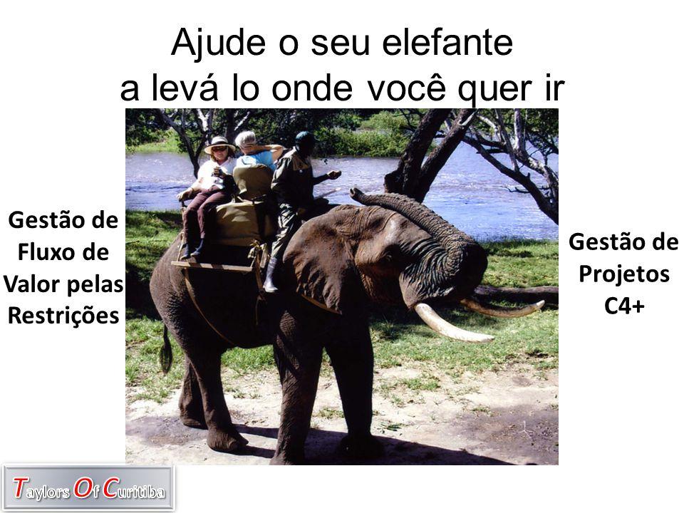 Ajude o seu elefante a levá lo onde você quer ir Gestão de Fluxo de Valor pelas Restrições Gestão de Projetos C4+