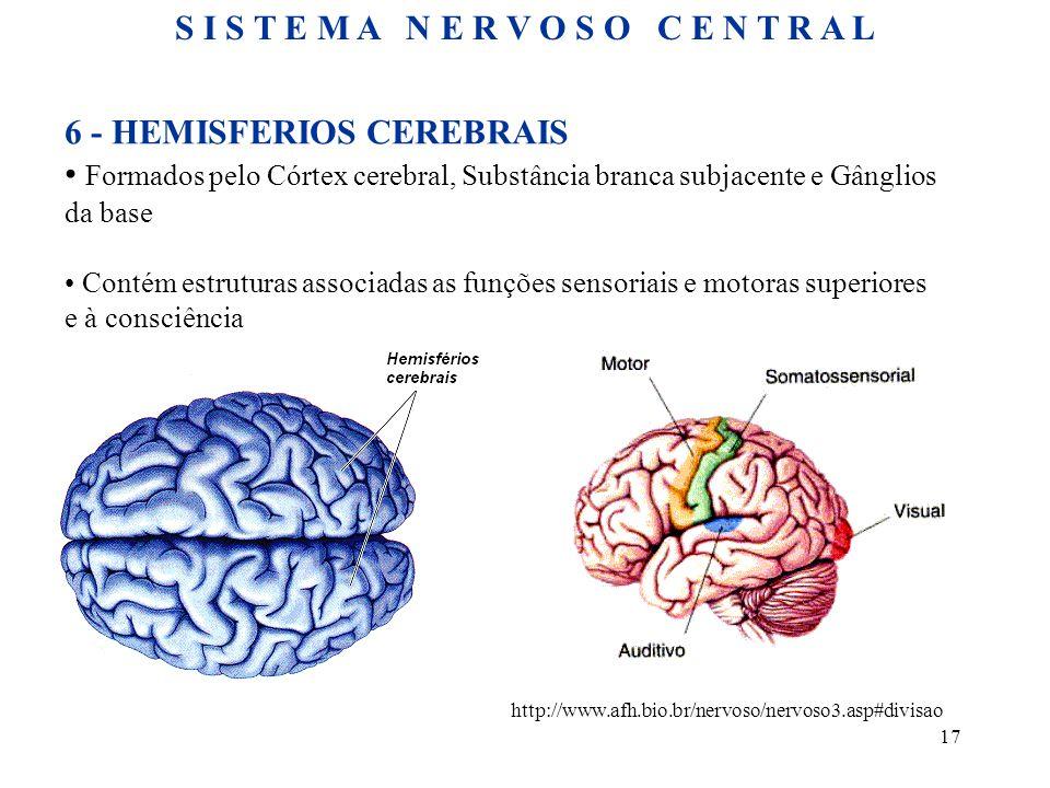 17 6 - HEMISFERIOS CEREBRAIS • Formados pelo Córtex cerebral, Substância branca subjacente e Gânglios da base • Contém estruturas associadas as funções sensoriais e motoras superiores e à consciência http://www.afh.bio.br/nervoso/nervoso3.asp#divisao S I S T E M A N E R V O S O C E N T R A L