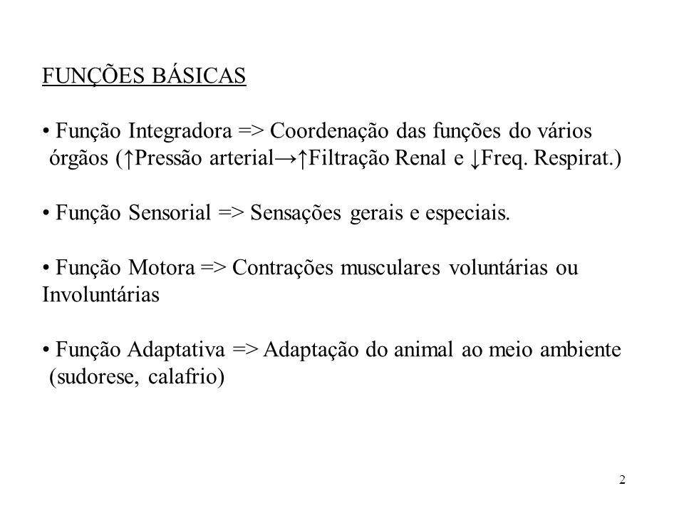 2 FUNÇÕES BÁSICAS • Função Integradora => Coordenação das funções do vários órgãos (↑Pressão arterial→↑Filtração Renal e ↓Freq.