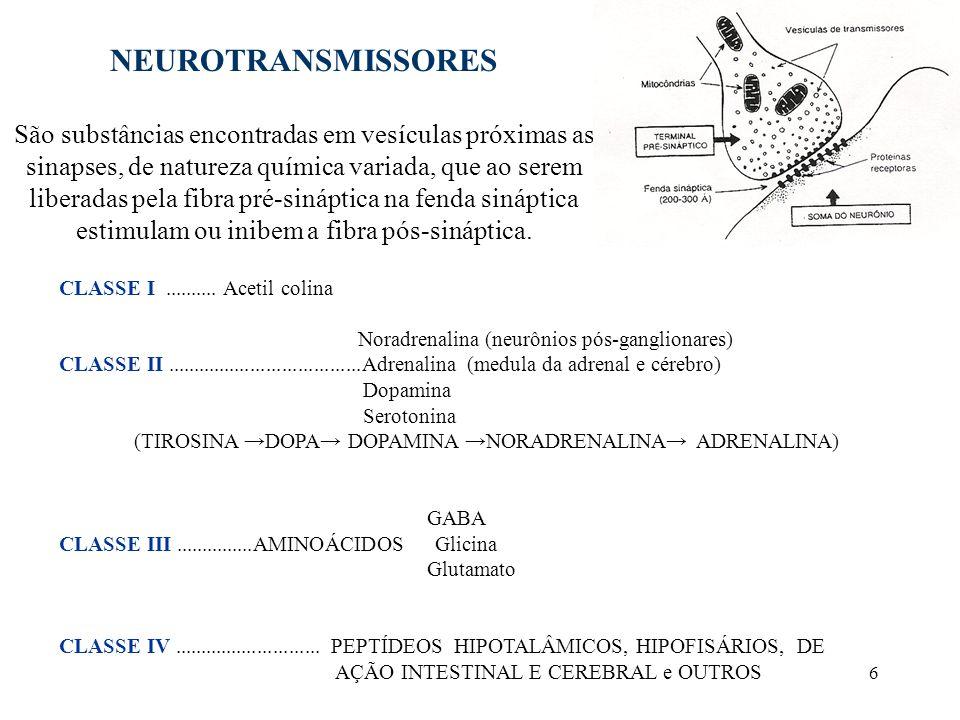 6 NEUROTRANSMISSORES São substâncias encontradas em vesículas próximas as sinapses, de natureza química variada, que ao serem liberadas pela fibra pré-sináptica na fenda sináptica estimulam ou inibem a fibra pós-sináptica.
