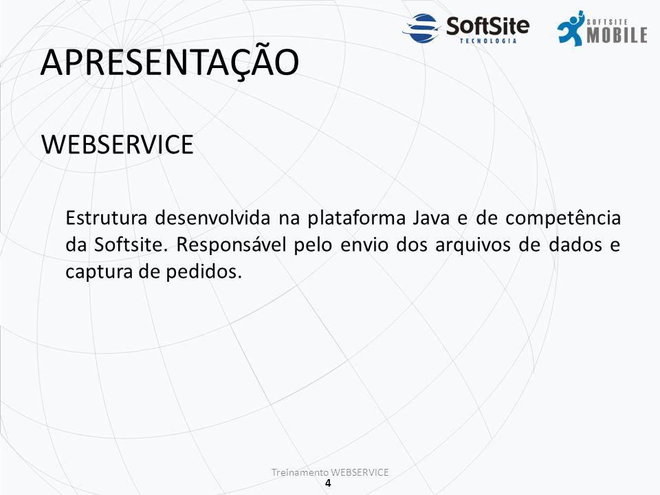 5 CONEXÃO PROCESSO DE CONEXÃO Para que o processo de exportação/importação seja possível, a máquina onde encontra-se instalado a aplicação WebService necessita está conectado a internet.