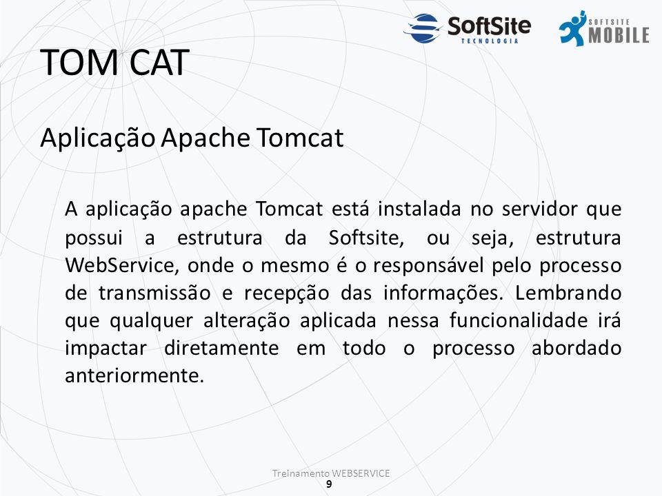 10 TREINAMENTO WEBSERVICE Treinamento WEBSERVICE Obrigado(a).