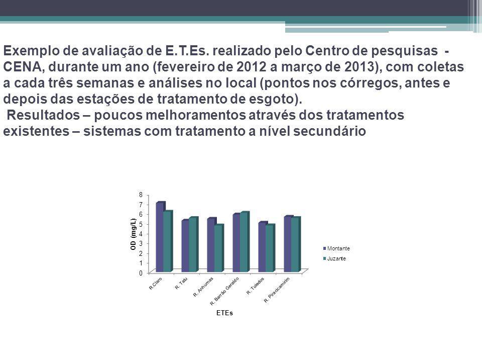 Exemplo de avaliação de E.T.Es. realizado pelo Centro de pesquisas - CENA, durante um ano (fevereiro de 2012 a março de 2013), com coletas a cada três