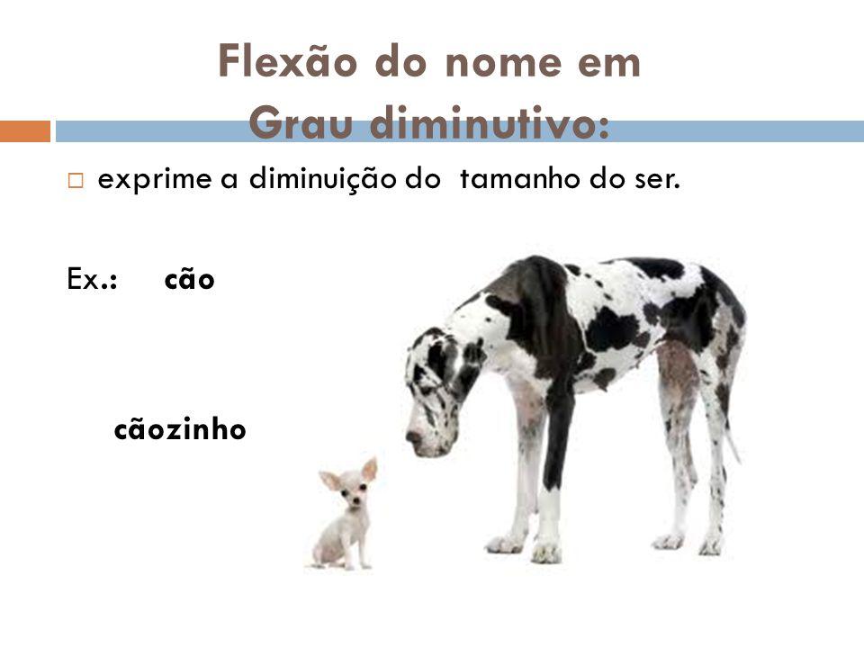 Flexão do nome em Grau diminutivo:  exprime a diminuição do tamanho do ser. Ex.: cão cãozinho