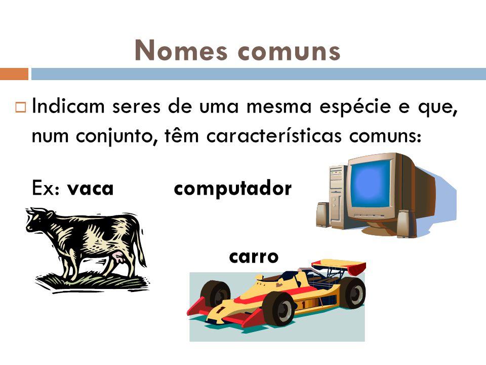 Nomes comuns  Indicam seres de uma mesma espécie e que, num conjunto, têm características comuns: Ex: vaca computador carro
