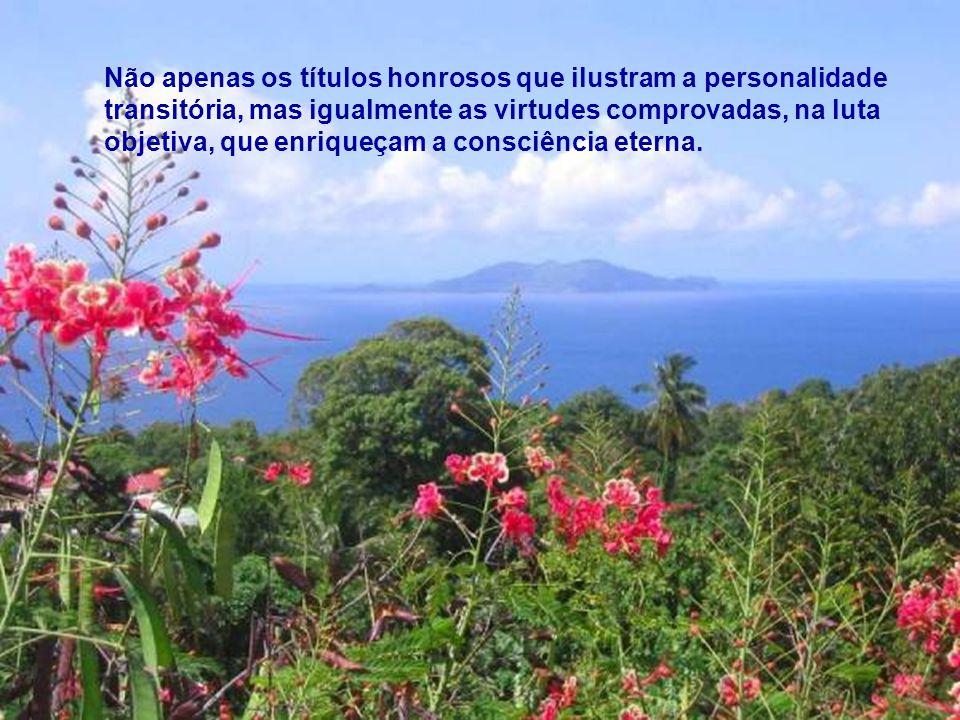 Não apenas os títulos honrosos que ilustram a personalidade transitória, mas igualmente as virtudes comprovadas, na luta objetiva, que enriqueçam a consciência eterna.