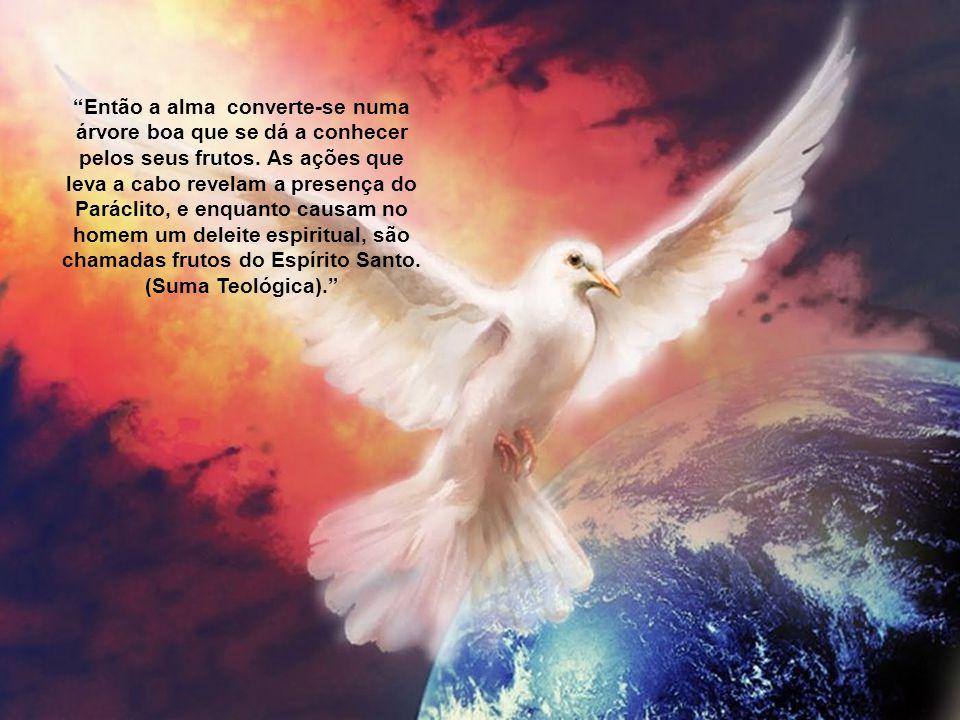 """Quando o homem deixa atuar o Espírito Santo a sua vida transforma-se numa vida """"segundo o Espírito"""", numa vida sobrenatural e já não simplesmente huma"""