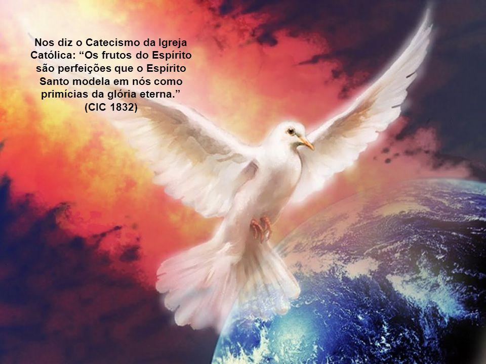 """""""São Tomás de Aquino, em sua Suma Teológica, caracterizou os frutos do Espírito como os últimos e agradáveis produtos da Ação do Espírito Santo em nós"""