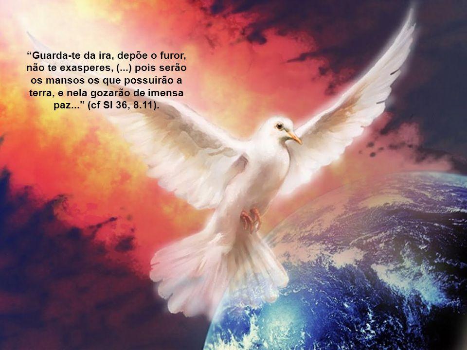 Guarda-te da ira, depõe o furor, não te exasperes, (...) pois serão os mansos os que possuirão a terra, e nela gozarão de imensa paz... (cf Sl 36, 8.11).