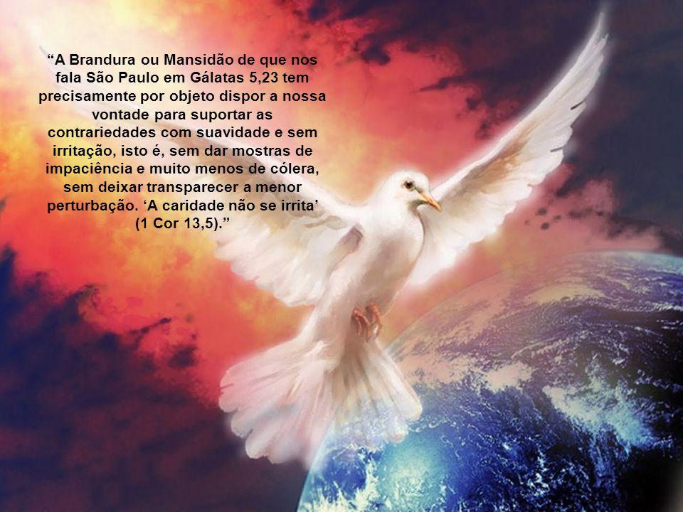 """""""Guarda-te da ira, depõe o furor, não te exasperes, (...) pois serão os mansos os que possuirão a terra, e nela gozarão de imensa paz..."""" (cf Sl 36, 8"""
