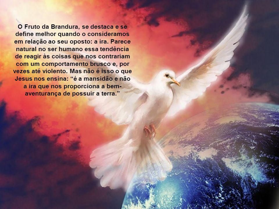 """""""A Brandura ou Mansidão de que nos fala São Paulo em Gálatas 5,23 tem precisamente por objeto dispor a nossa vontade para suportar as contrariedades c"""