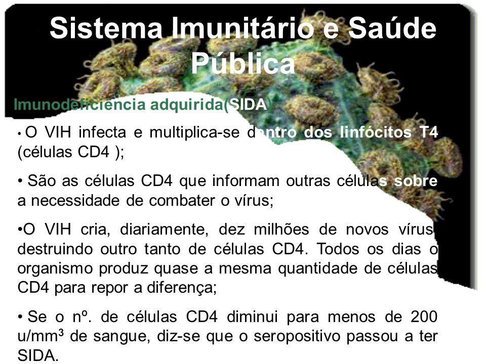 Sistema Imunitário e Saúde Pública Imunodeficiência adquirida(SIDA) • O VIH infecta e multiplica-se dentro dos linfócitos T4 (células CD4 ); • São as