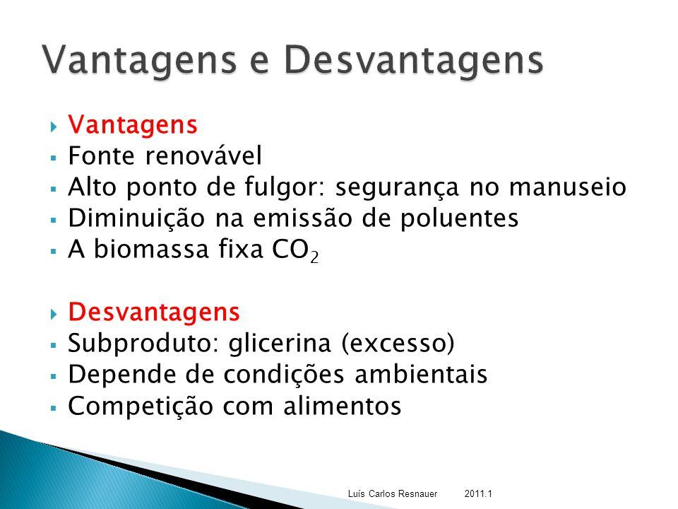  Vantagens  Fonte renovável  Alto ponto de fulgor: segurança no manuseio  Diminuição na emissão de poluentes  A biomassa fixa CO 2  Desvantagens