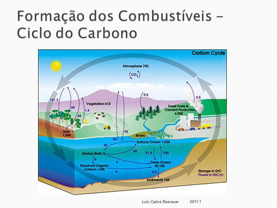  Vegetais absorvem água e CO 2  Insolação  Processos bioquímicos (fotossíntese)  Formação de carboidratos, lipídios, proteínas Luís Carlos Resnauer 2011.1