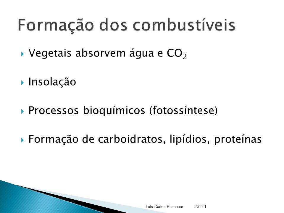 Vegetais absorvem água e CO 2  Insolação  Processos bioquímicos (fotossíntese)  Formação de carboidratos, lipídios, proteínas Luís Carlos Resnaue
