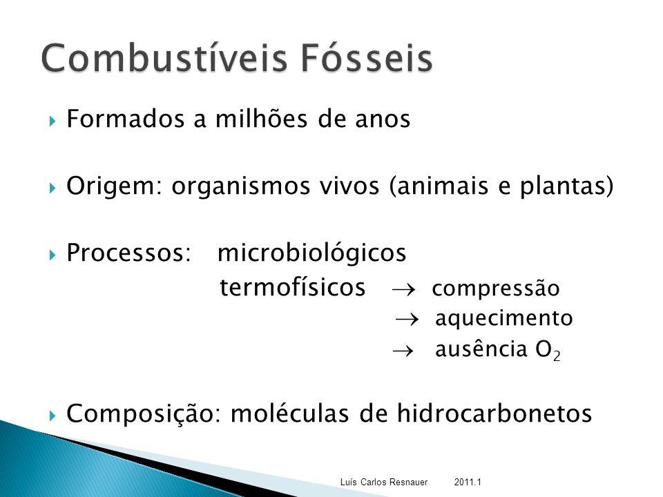  Formados a milhões de anos  Origem: organismos vivos (animais e plantas)  Processos: microbiológicos termofísicos  compressão  aquecimento  aus