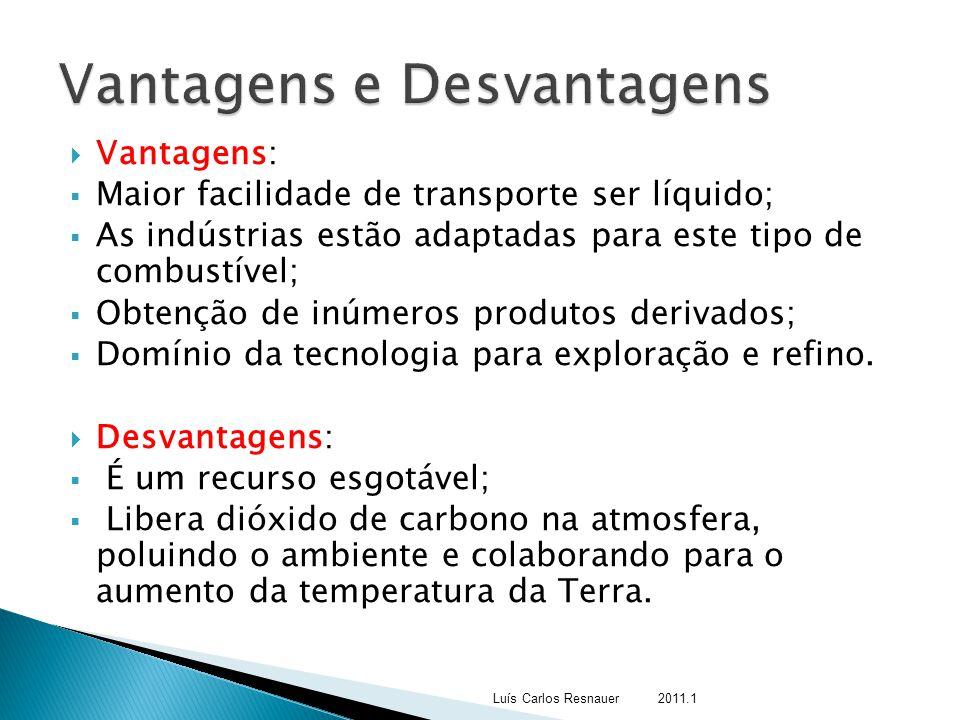 Vantagens:  Maior facilidade de transporte ser líquido;  As indústrias estão adaptadas para este tipo de combustível;  Obtenção de inúmeros produ