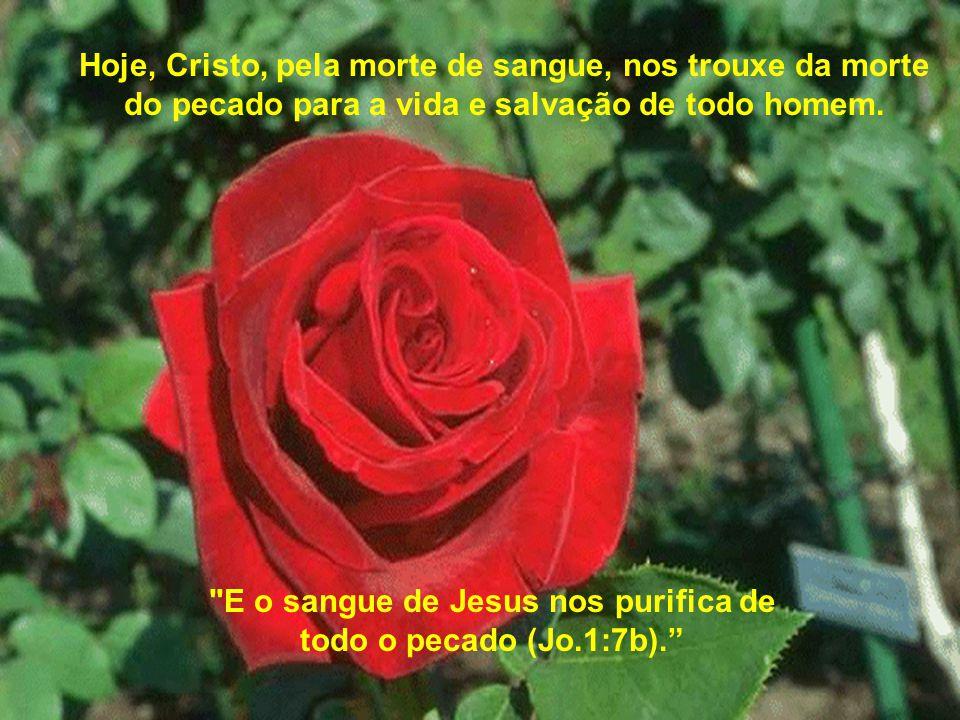 Hoje, Cristo, pela morte de sangue, nos trouxe da morte do pecado para a vida e salvação de todo homem.