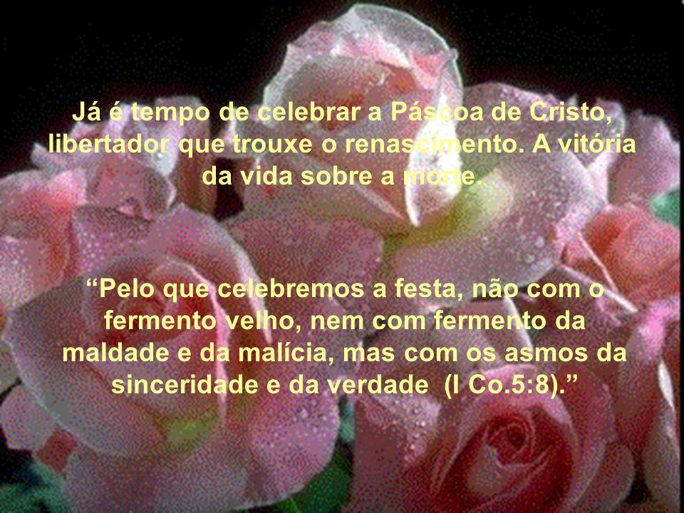 """Já é tempo de celebrar a Páscoa de Cristo, libertador que trouxe o renascimento. A vitória da vida sobre a morte. """"Pelo que celebremos a festa, não co"""