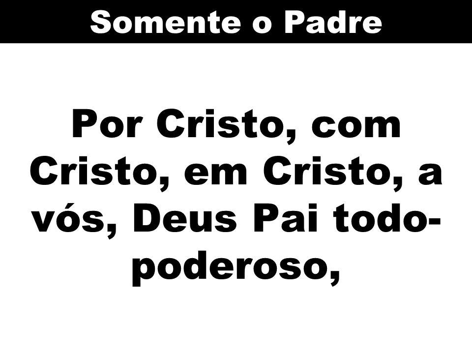 Por Cristo, com Cristo, em Cristo, a vós, Deus Pai todo- poderoso, Somente o Padre